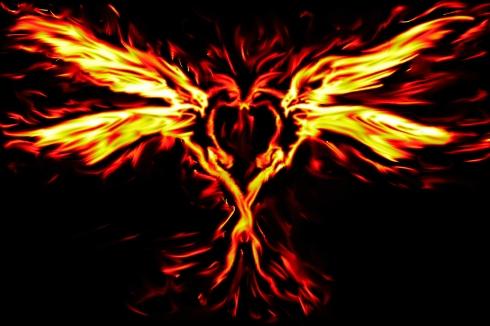 Phoenix_love
